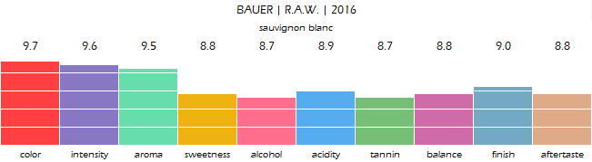 bauer_raw_2016_review