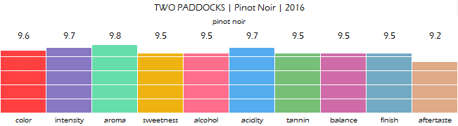 TWO_PADDOCKS_Pinot_Noir_2016_review
