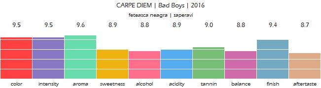CARPE_DIEM_Bad_Boys_2016_review